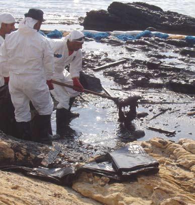 ניקוי דלפית הנפט משנת 2006