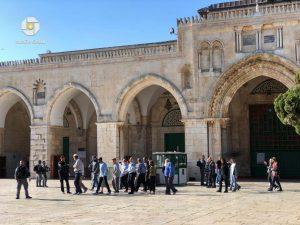 עלית יהודים להר הבית // קרדיט : רשתות ערביות
