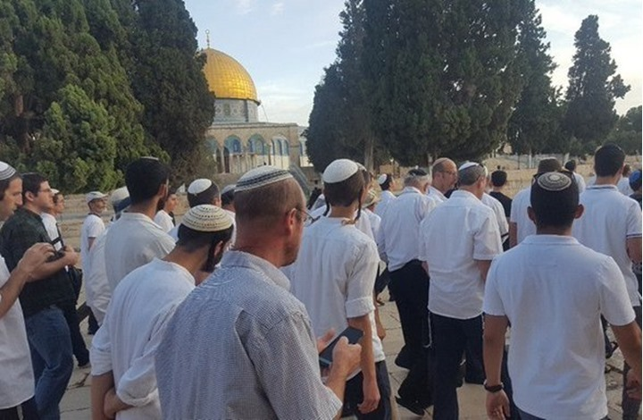 ביקורי יהודים על ההר הבית חזרו מהר הפעם כחלק מלקחי מדינת ישראל מן העבר // צילום: רשתות ערביות