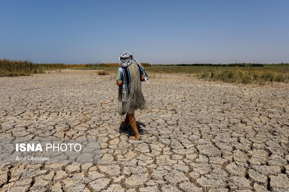 """מאות אלפי דגים התפגרו בביצה במחוז ח'וזסתאן, התמונה הסוכנות אירנ""""א 2.7.2021 (איראן)"""